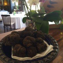 [:es]Trufas negras[:en]Black truffles[:]