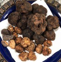 Black Truffles of Teruel and Bianchetto Italian